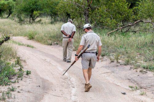 Animal trackers on an African anti poaching safari.