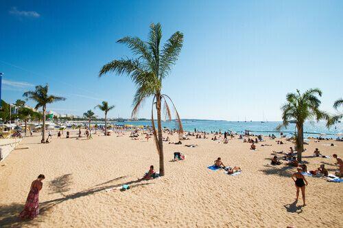 The palm tree lined Barceloneta Beach in Barcelona, Spain.