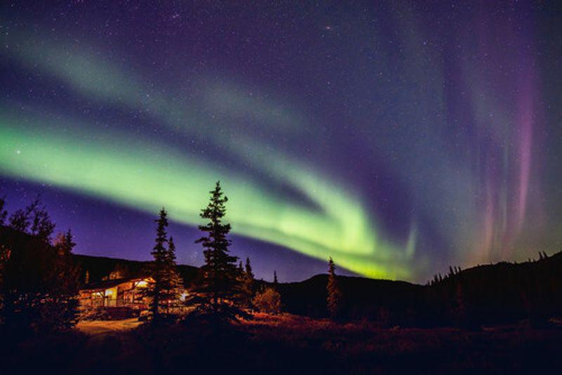 Northern Lights on display in Fairbanks.