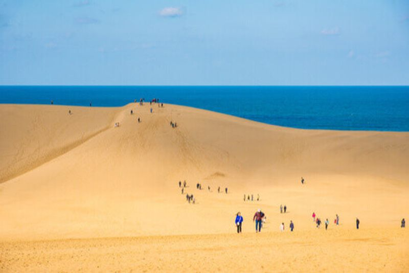 The Tottori sand dunes in Western Japan.