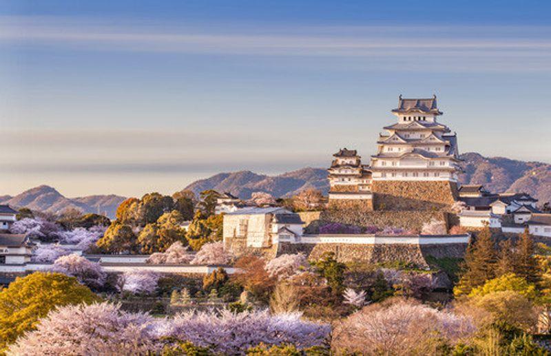 The beautiful Himeji Castle in spring.