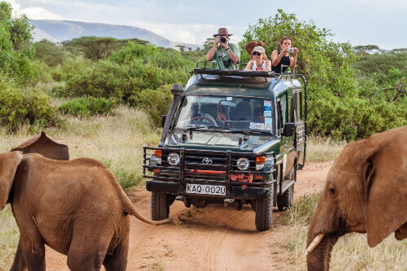 Tourists in an all-terrain vehicle taking photos and exploring the elephants in Masai Mara.