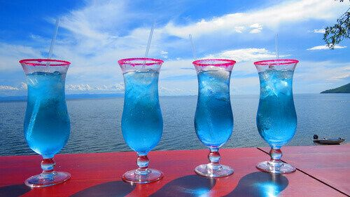 A Cocktail Party at Lake Kariba.